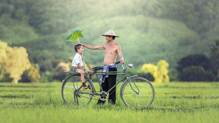 家族DAYと中国輸入